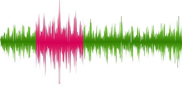 人間の言語を知るためには、音声の解析が重要だ